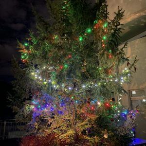 クリスマスの飾り付けをしました